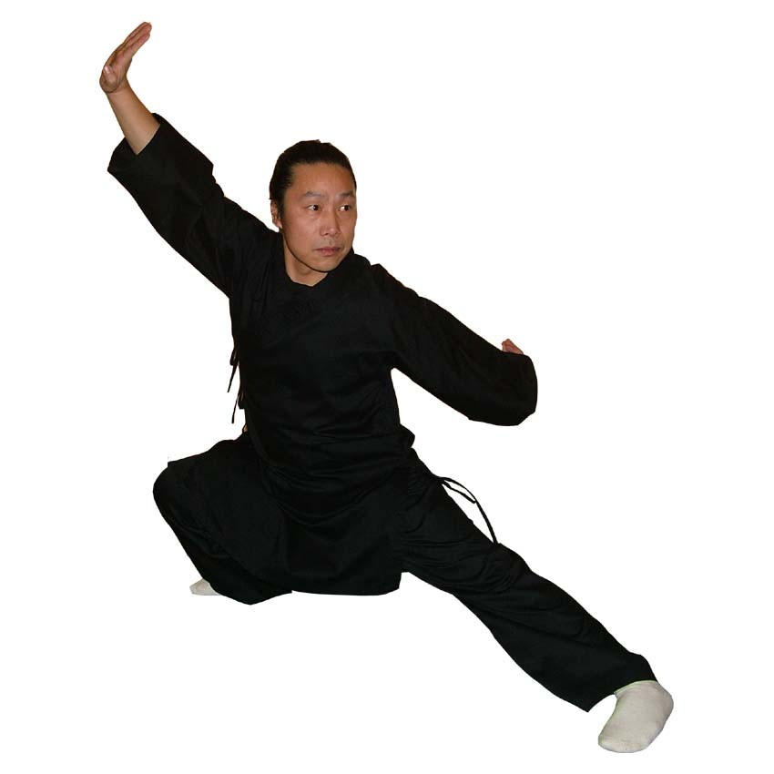 Shaolin Kung Fu Anzug